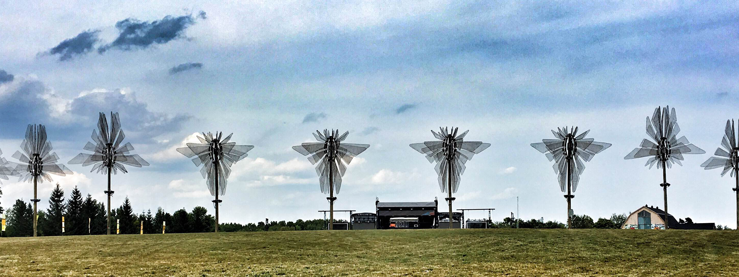 dragonflies-at-wayhome-festival
