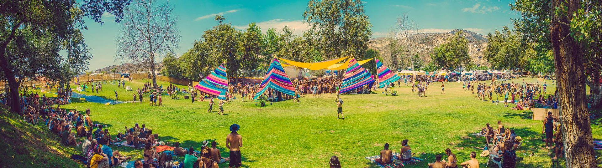 Woogie Pano